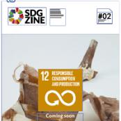 SDGzine 02