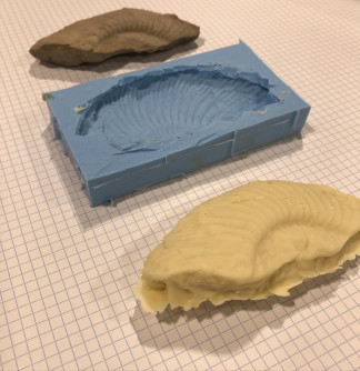 Fossil - 3D scanning & chocolate mould